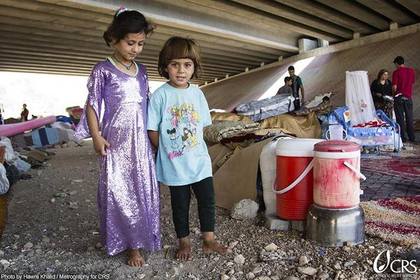Pope Francis Twitted - I pray every day for all who are suffering in Iraq. Please join me.