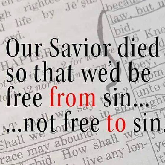Free from sin, not free to sin