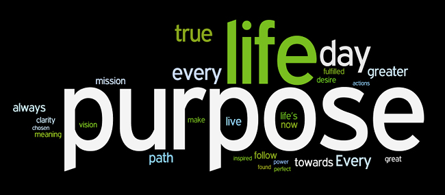 Purpose is the Cure for the temptation to Sin